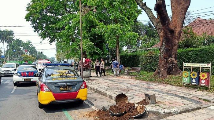 Enam Pot Tanaman di Jalan Besar Ijen Malang Dirusak ODGJ