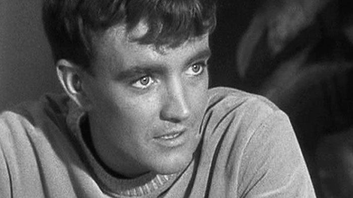 Profil-Biodata Robert Walker Jr, Aktor Film Hollywood Star Trek Meninggal Dunia pada Usia 79 Tahun