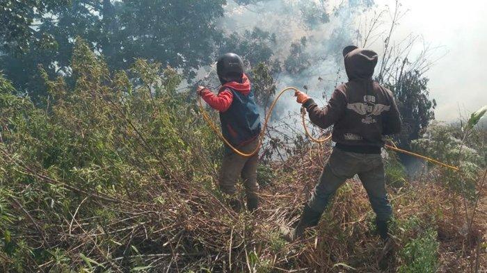 Kebakaran Hutan Semeru Dinyatakan Berakhir, Hujan Dua Hari Padamkan Api
