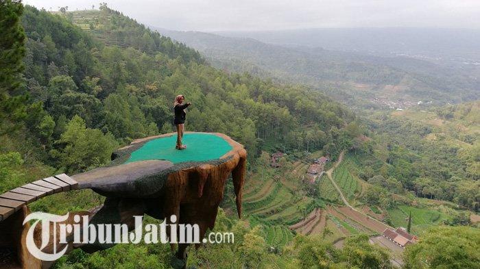 Pengunjung sedang menikmati pemandangan indah di Kampung Papua, Goa Pinus, Dusun Brau, Desa Gunungsari, Kecamatan Bumiaji, Kota Batu.