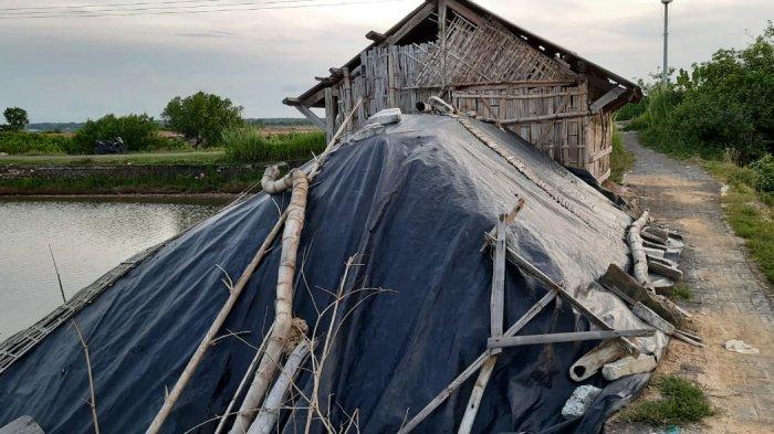 Ribuan Ton Garam Rakyat Tidak Terserap, Petani Sebut Rendahnya Soal Harga