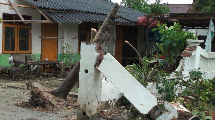Hujan Deras Disertai Angin Puting Beliung Terjang Tuban, 42 Rumah Rusak, Kerugian Capai 90 Juta