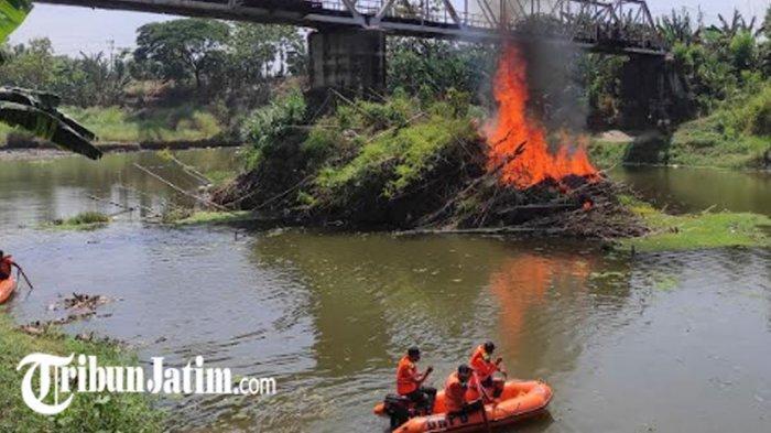 Sampah Rumpun Bambu yang Menumpuk 20 Tahun di Bawah Jembatan Sambirejo Dibersihkan, Warga Lega