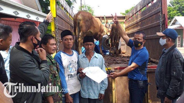 2 Sapi Limousin WargaDusun Tong Maling Hilang Jelang Pagi, Ketemu diKandang Tetangga