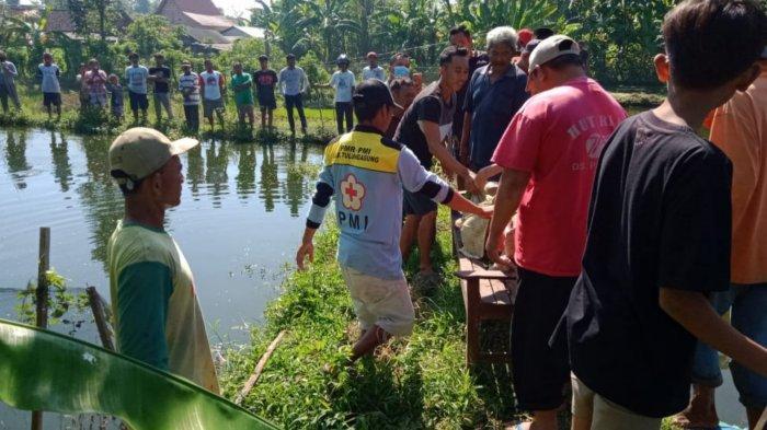 Tulungagung Geger, Seorang Nenek Ditemukan Terapung di Kolam Gurame, Saksi Kuak Fakta Penting