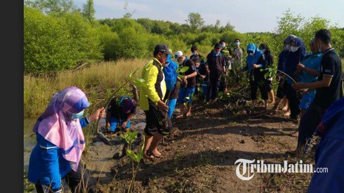 Tanam Mangrove untuk Wujudkan Amazon Van Java di Pesisir Utara Gresik