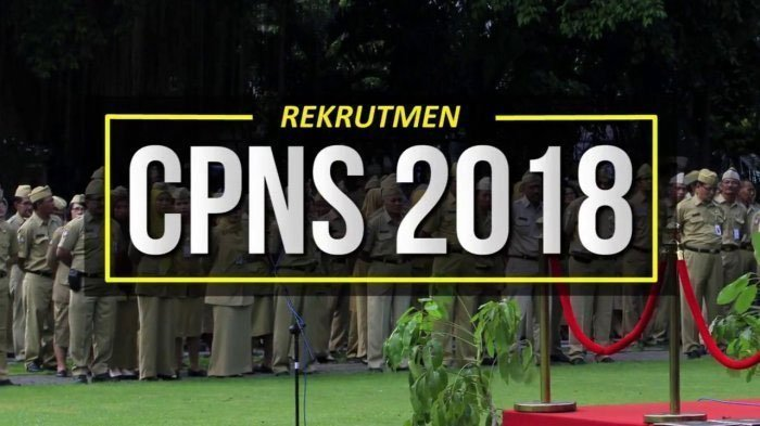 CPNS 2018, Usulan Penurunan Passing Grade Ditolak, BKN akan Gunakan Pemeringkatan