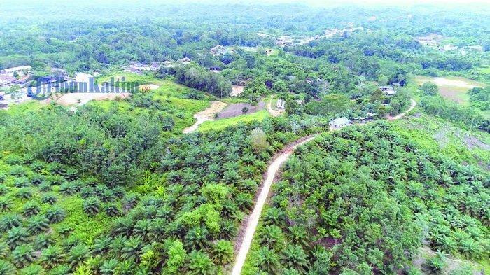 Mengintip Potensi Penajam, Calon Ibu Kota Baru Indonesia di Kaltim, Begini Kondisi Sumber Airnya