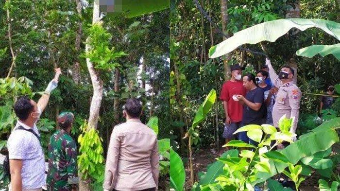 Geger Suami Tewas Tergantung di Pohon 7 Meter, Jasad Istri Tanpa Busana di Kamar yang Terkunci