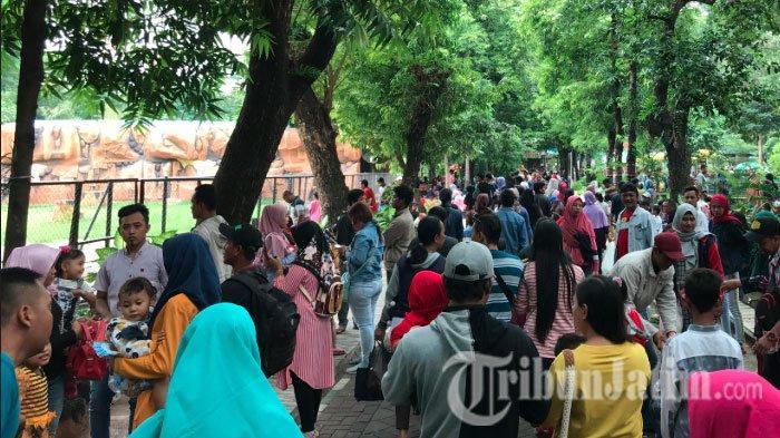 Libur Tahun Baru 2020, Kebun Binatang Surabaya Diserbu 63 Ribu Pengunjung