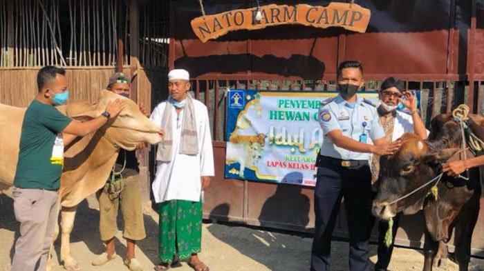 Lapas Pamekasan Sembelih 2 Sapi dan 8 Kambing di Idul Adha 2021, Daging Kurban Dibagi ke Narapidana