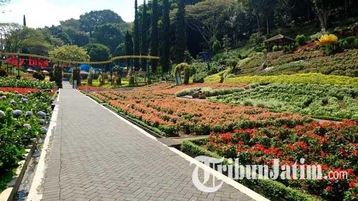 Meski Sudah Boleh Buka, Taman Rekreasi Selecta Kota Batu Masih Tutup: Tak Mau Kecewakan Pengunjung