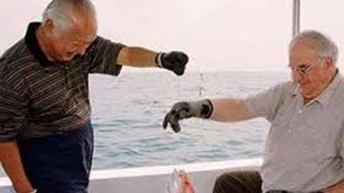 Terkuak Misteri Soal Marinir di Bawah Kapal Saat Soeharto Mancing, Harmoko Sempat Jadi Saksi