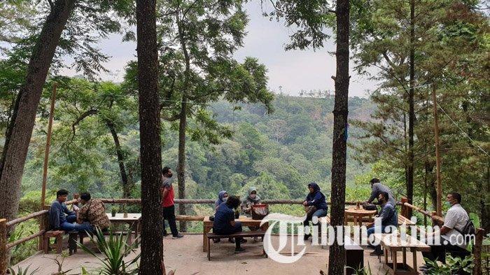 Nikmati Nasi Purakan Sambel Ulek di Trawas Mojokerto, Rasakan Sensasi Makan di Tengah Hutan Pinus