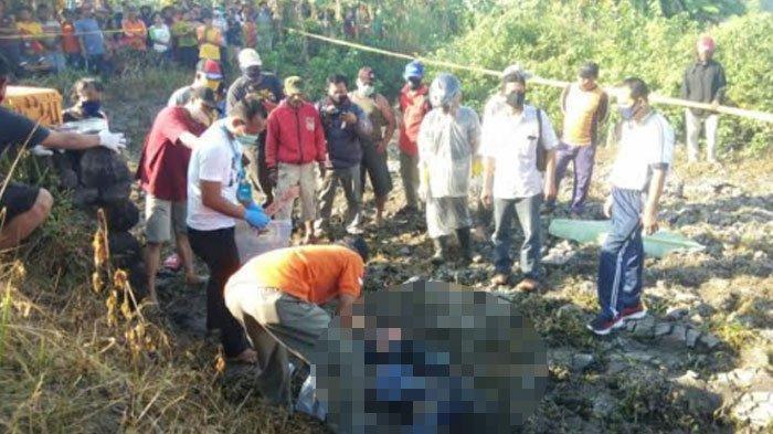 Geger Mayat Pria Sidoarjo Tergeletak di Area Persawahan Mojokerto, Luka Tusuk di Perut, Dibunuh?