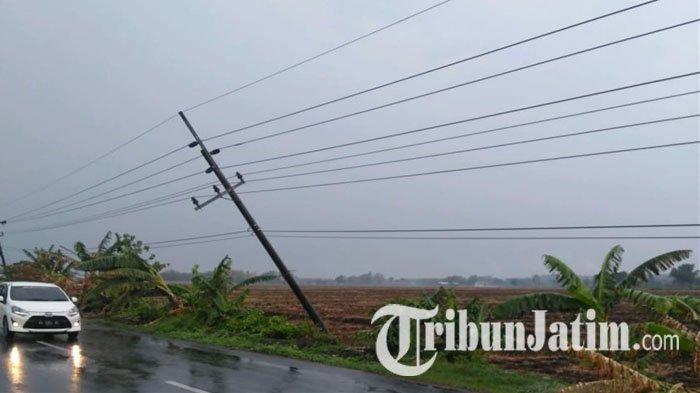 Angin Puting Beliung & Hujan Deras, Sejumlah Pohon & Tiang Listrik Roboh di Ruas Jalan di Jombang