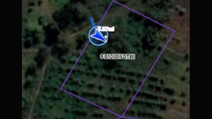Bekas Makam 1980 di Lahan Perhutani Mojokerto 'Ditinjau' Jadi Area Pemakamam Jenazah Covid-19 Jatim