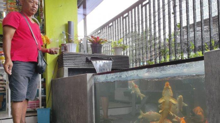 Warga Sentul Kota Blitar Raup Jutaan Rupiah Tiap Bulan dari Budidaya Ikan Koi di Lahan Sempit