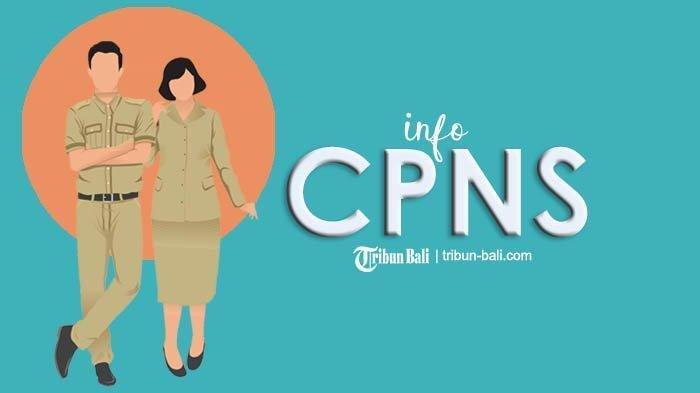 UPDATE CPNS 2019 dari BKN, 5 Juta Orang Buat Akun dan Daftar Formasi yang Masih Kosong Pelamar