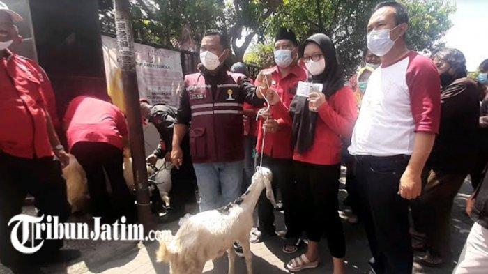 Vaksinasi Covid-19 di Desa Domas Berhadiah Kambing, Bupati Gresik Ikut Tambah Hadiah 2 Ekor
