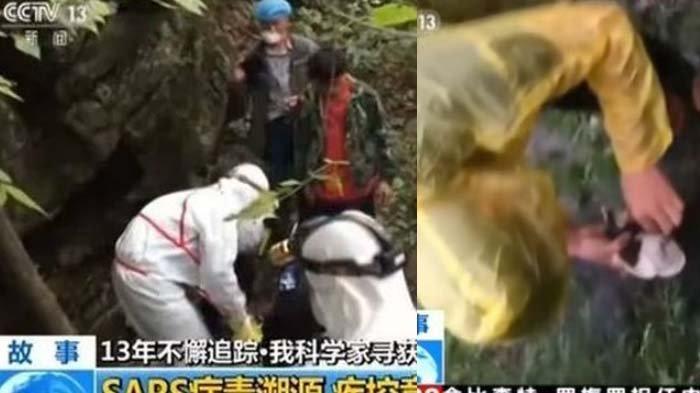 Video lama ilmuwan Wuhan tangani kelelawar. Mereka mengenakan APD berbeda-beda