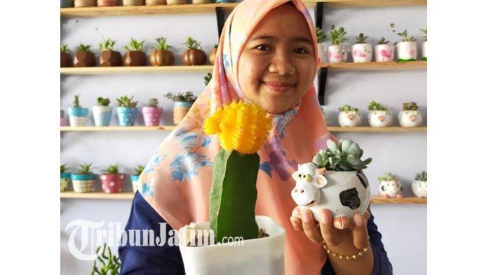 Bisnis Kaktus Mini Mahasiswa Surabaya Ini Raup Omzet Puluhan Juta Rupiah, 'Awalnya Cuma Iseng'