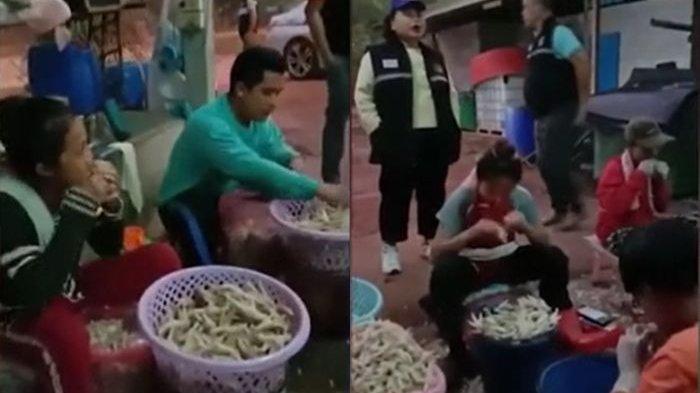 Bocor Praktik Menjijikkan Pabrik Ceker Ayam, Pegawai Pakai Mulut Demi 'Cepat', Bos Pabrik Buka Suara