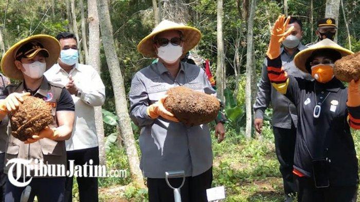Petani Milenial Bermunculan Selama Pandemi Covid-19, Wakil Menteri Pertanian RI: Terus Berinovasi