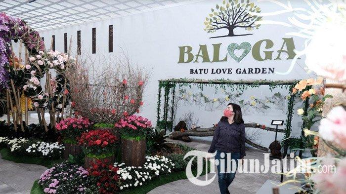 Pengunjung Batu Love Garden (Baloga) berjalan-jalan di ruangan yang banyak terdapat hiasan bunga. Selain bunga, pengunjung juga bisa berinteraksi dengan hewan-hewan seperti kupu-kupu dan belalang, Minggu (20/12/2020).