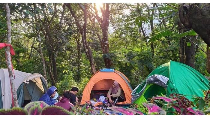 Harga Tiket Masuk Wisata Panorama Petung Sewu di Mojokerto, Berikut Daya Tarik & Rute Menuju ke Sana