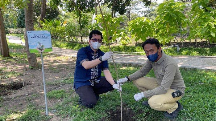 Dorong Pengurangan Polusi Udara, BAF Gencarkan Penanaman Ribuan Bibit Pohon di 6 Kota
