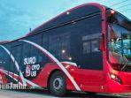 10-suroboyo-bus-baru.jpg