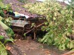bangunan-rusah-tertimpa-pohon.jpg