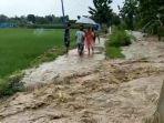 banjir-di-area-persawahan-desa-tugu.jpg