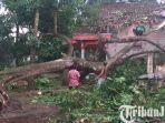 berita-blitar-polisi-dan-warga-bersihkan-pohon-tumbang-di-wilayah-ponggok-kabupaten-blitar.jpg