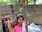 berita-kediri-nur-haryatun-memanggul-genteng-rumahnya-yang-diperbaiki-relawan-kediri.jpg