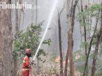 berita-tuban-hutan-4-hektar-di-tuban-terbakar.jpg