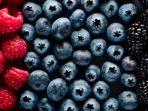 buah-beri-atau-berries.jpg
