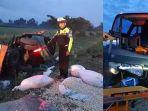 daftar-korban-kecelakaan-bus-rombongan-sma-muhammadiyah-1-gondangrejo-di-tol-madiun-ngawi-2-tewas.jpg