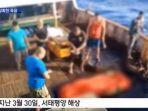 detik-detik-pembuangan-jenazah-abk-indonesia-ke-laut-dari-kapal-china.jpg