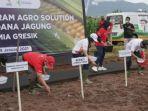 direktur-operasi-dan-produksi-pg-digna-jatiningsih-menanam-benih-jagung.jpg