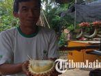 durian-ripto.jpg