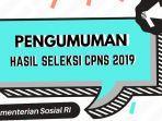 hasil-seleksi-administrasi-cpns-2019-kemensos.jpg