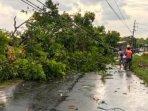 hujan-deras-dan-angin-kencang-desa-kloposepuluh-sukodono-sidoarjo-membuat-pohon-tumbang.jpg