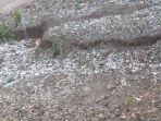 hujan-es-terjadi-di-kecamatan-miomafo-timur.jpg