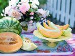 ilustrasi-manfaat-dari-buah-melon.jpg