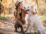 ilustrasi-mimpi-bertemu-anjing-putih.jpg