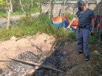 ilustrasi-pembantaian-anjing-di-kelurahan-sidoharjo-pacitan-ilustrasi-pembakaran-anjing-di-pacitan.jpg