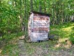 ilustrasi-toilet-umum-di-hutan-tempat-tragedi-gadis-syok-buang-air-malah-bokong-terluka-parah.jpg