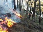 kebakaran-hutan-gunung-arjuno-sabtu-382019.jpg